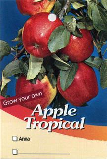 Apple Tropical - Anna