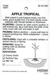 Apple Tropical - Well suited to sub-tropical areas