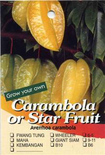Carambola or Star Fruit Averrhoa carambola
