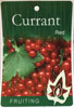 Currant - Red  - Ribes rubrum
